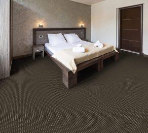 Hospitality Carpet:350