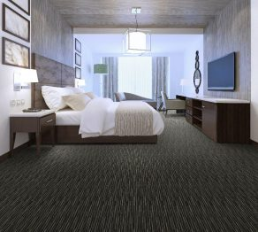 Hospitality Carpet:365