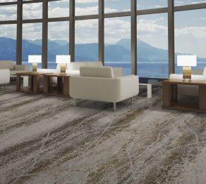Hospitality Carpet:V114