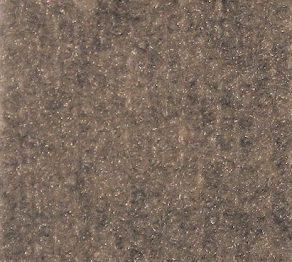 Indoor/Outdoor Carpet:Spectrum