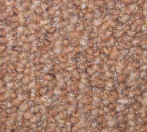 Indoor/Outdoor Carpet:Countryside